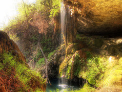 Waterfall at Westcave Preserve